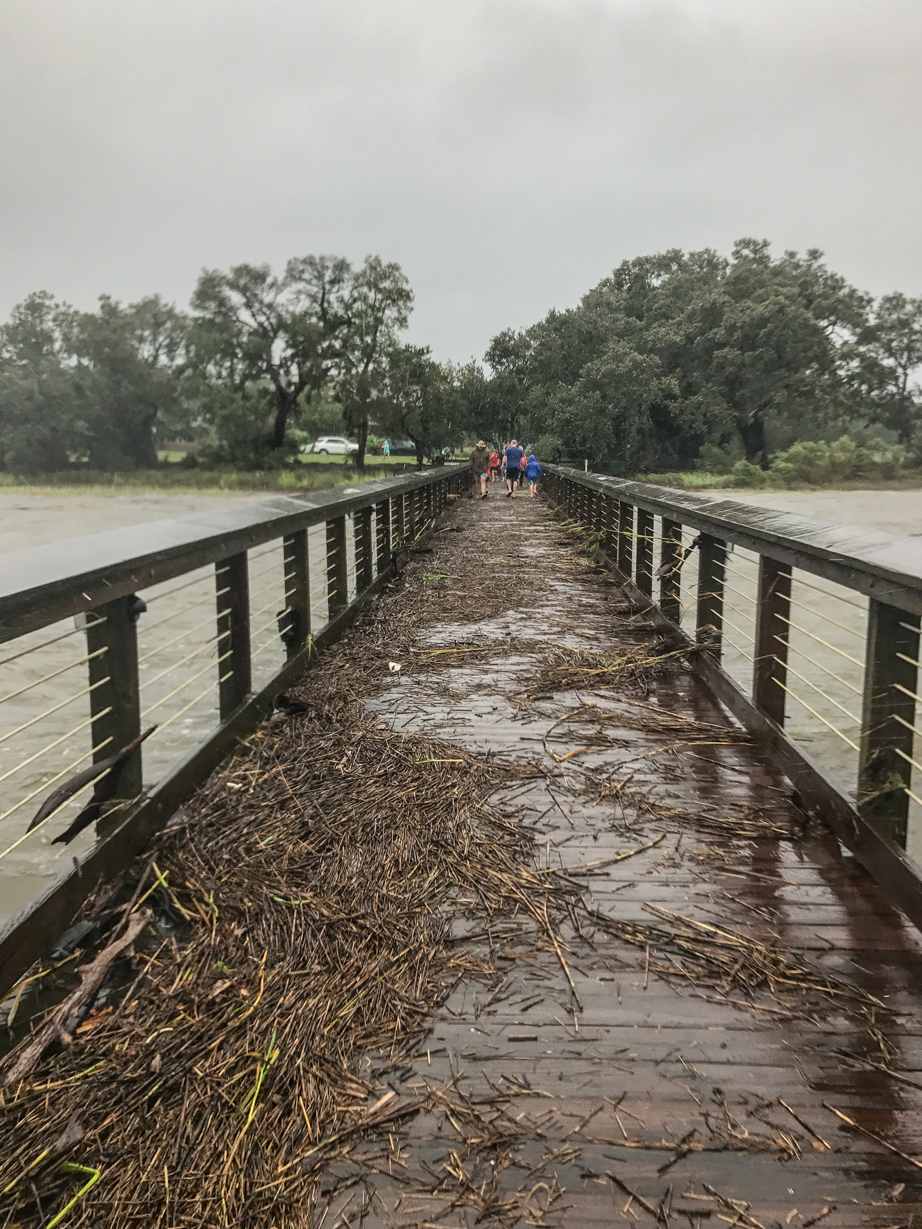 Mary Wessner Photography: The Wando River pier.
