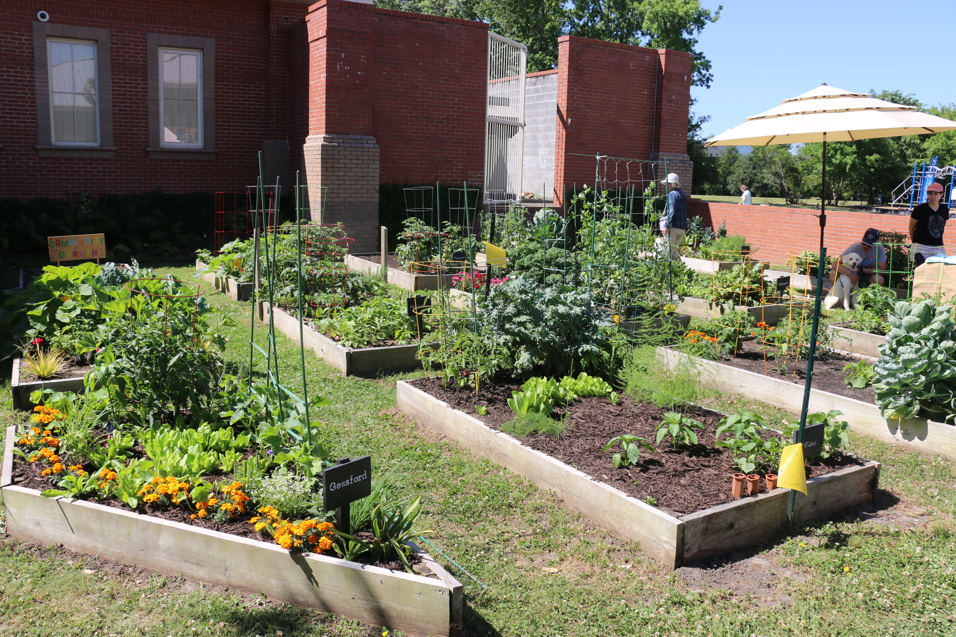 The space includes several small gardens maintained by community members.