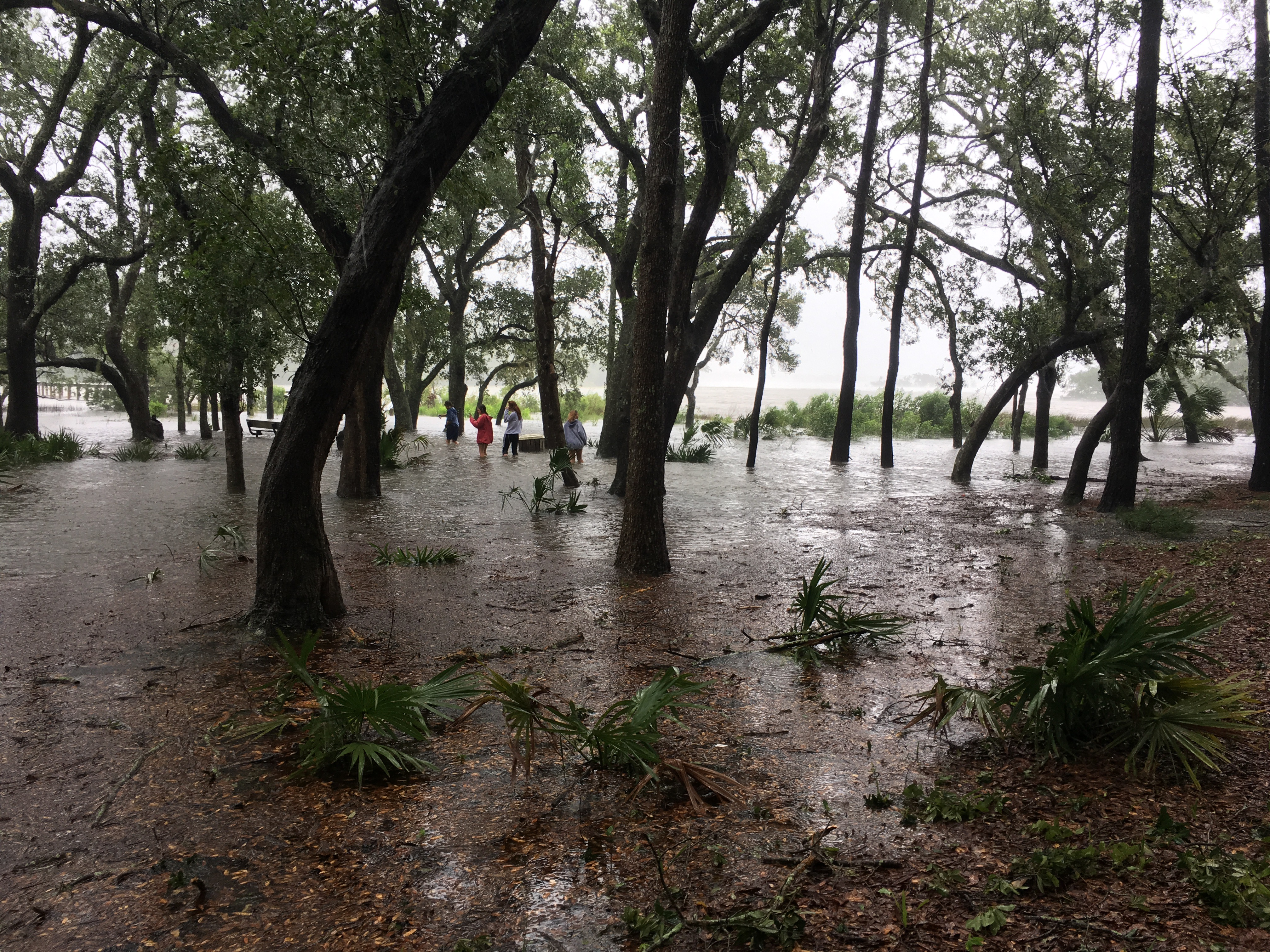 Barfield Park is under water as high tide hits.
