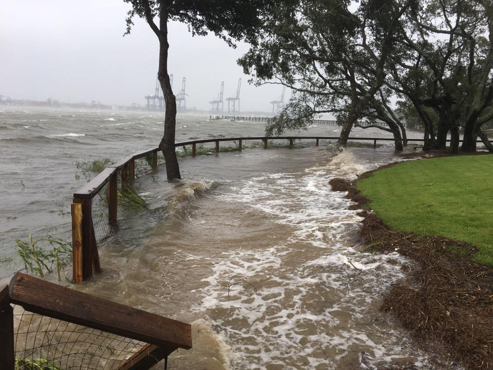 The Wando River washes into the backyard of a Smythe Park home.