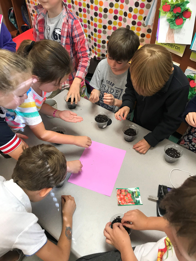 Several students at Daniel Island School took part in Earth Day-related activities last week. Pictured here, first graders in Diana Allbritton's class work on planting a variety of vegetables in their classroom's indoor garden.