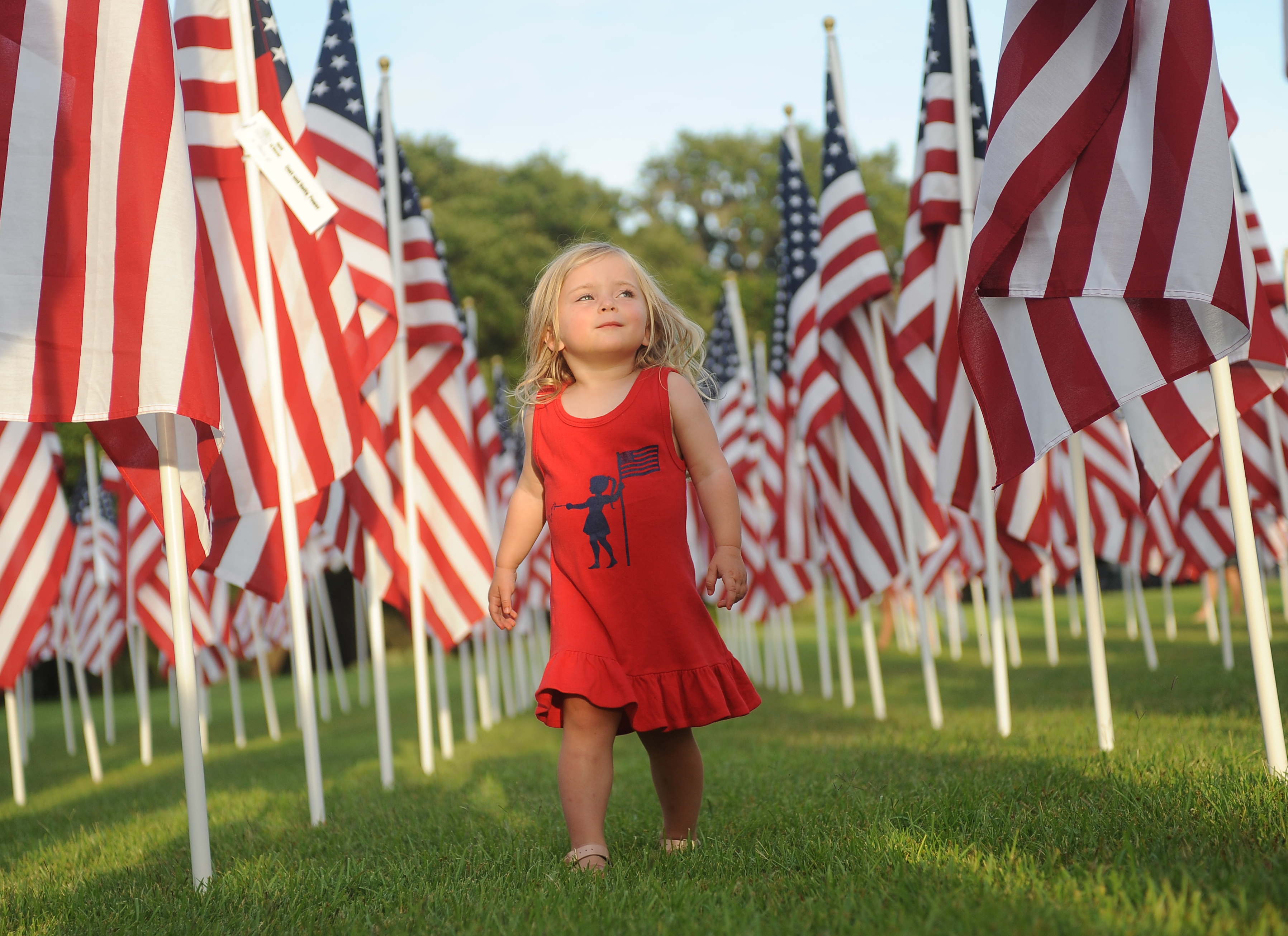 Gracie Harridge, age 2, takes in the Field of Honor.